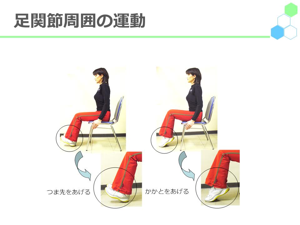 足関節周囲の運動の写真